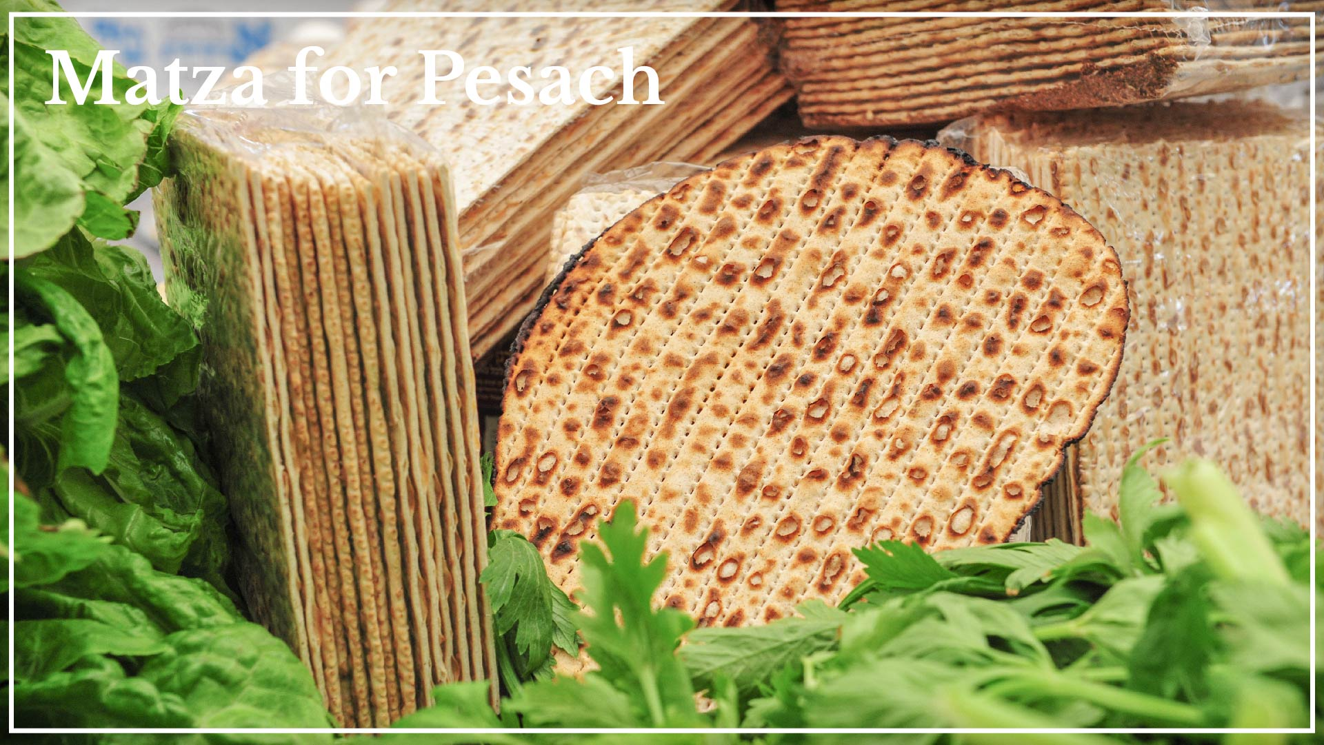 Matza for Pesach - official unleavened bread for Pesach